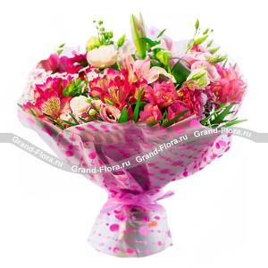 Купить цветы кандалакша, лучшие цветы в дом фото и названия